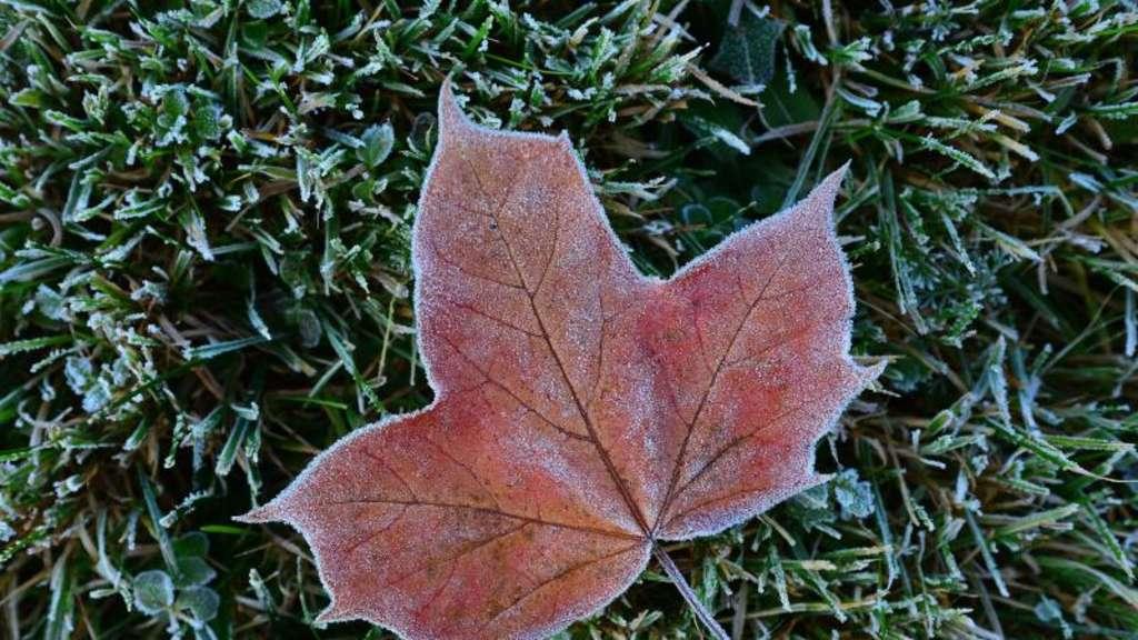 Wetter - Kühler Wochenbeginn für Hessen: Nachts wird es glatt