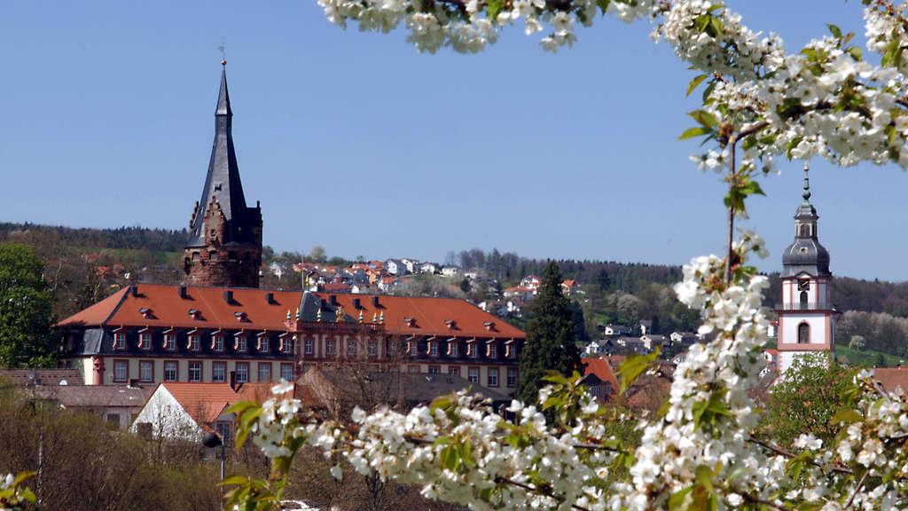Weniger Besucher Im Schloss Erbach Hessen