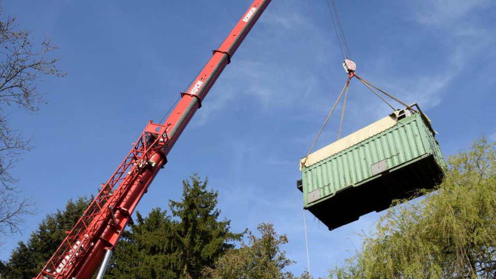 Kran hebt Container mit Flußpferd Max in die Höhe.