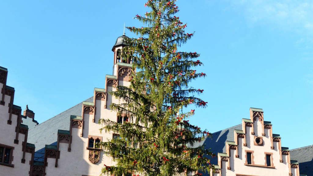 Weihnachtsbaum Frankfurt.Wollen Sie Den Weihnachtsbaum Auf Dem Römer Anknipsen Frankfurt