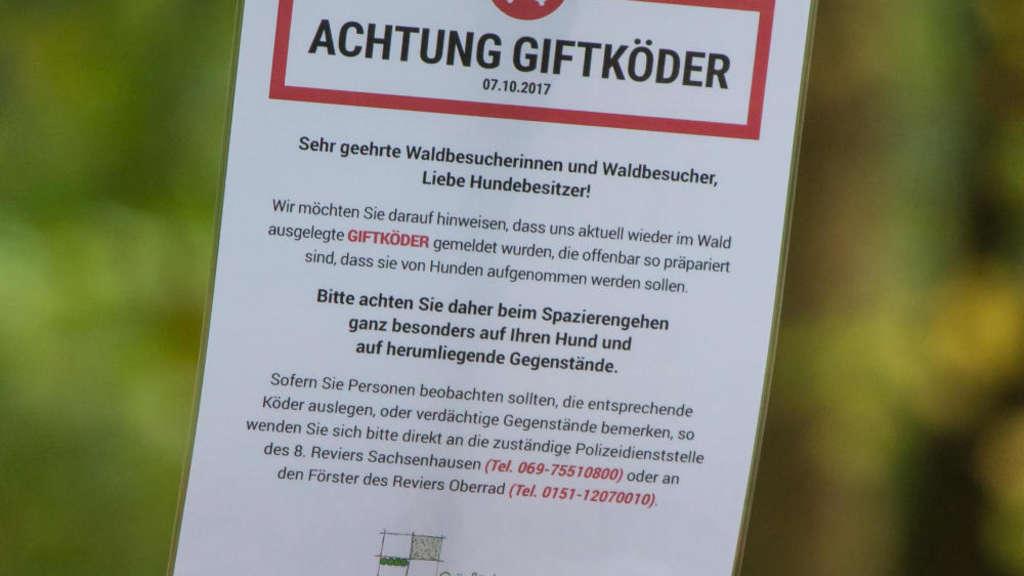 So Erkennen Sie Ob Ihr Hund Einen Giftköder Gefressen Hat Frankfurt