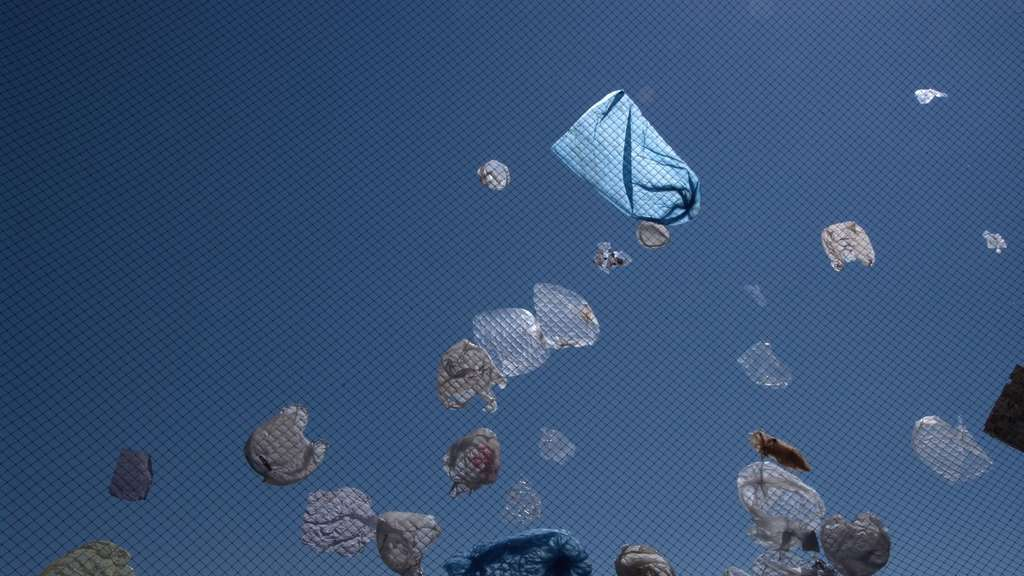 Plastic bags flying
