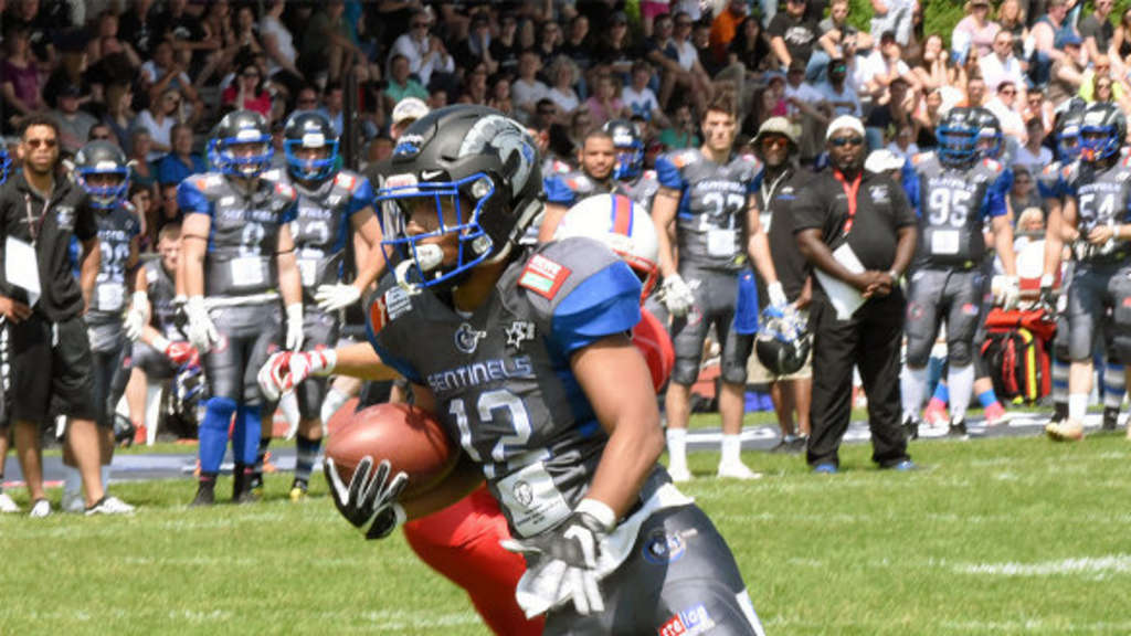 Oberliga: Bad Homburg Sentinels - Rodgau Pioneers